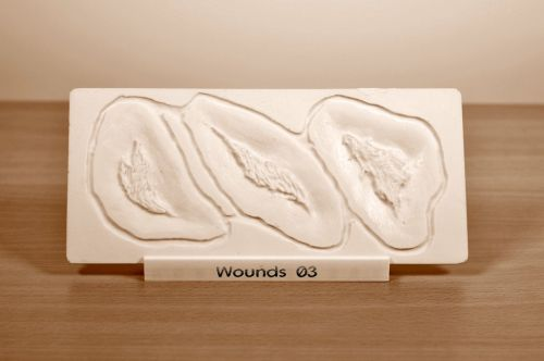 Prosthetic mould Wounds 03